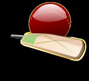 Cricket-03-800px